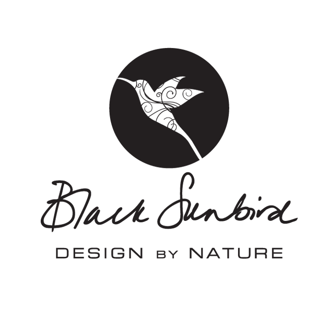 Black Sundbird